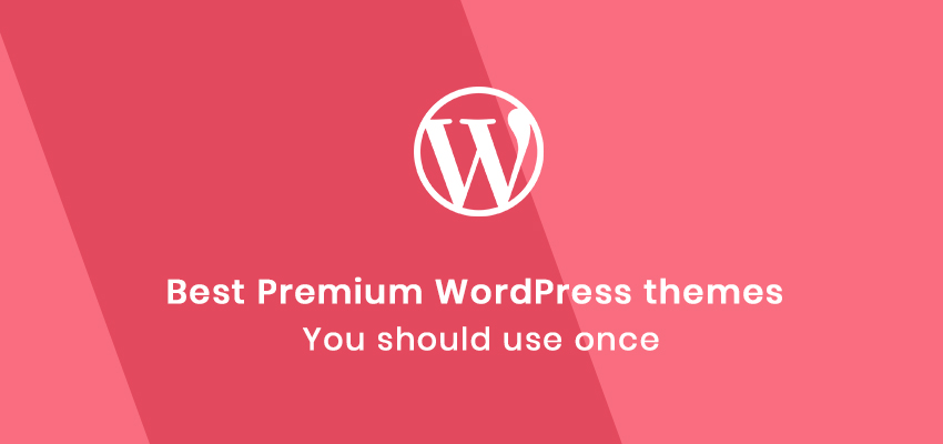 best premium WordPress themes you should once