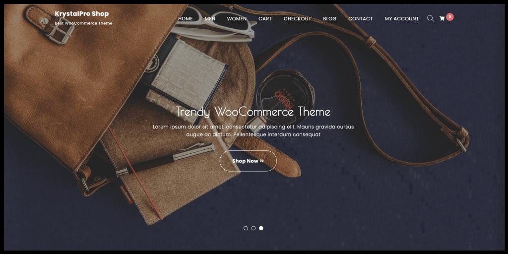 WordPress theme for eCommerce website