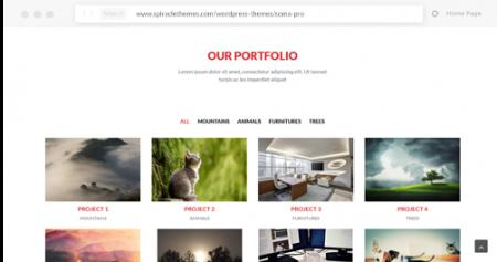 somapro-portfolio